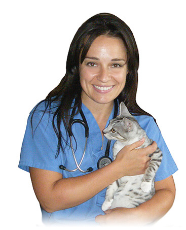 Dr. Laura Palumbo - Mobile Veterinarian -  London, Ontario